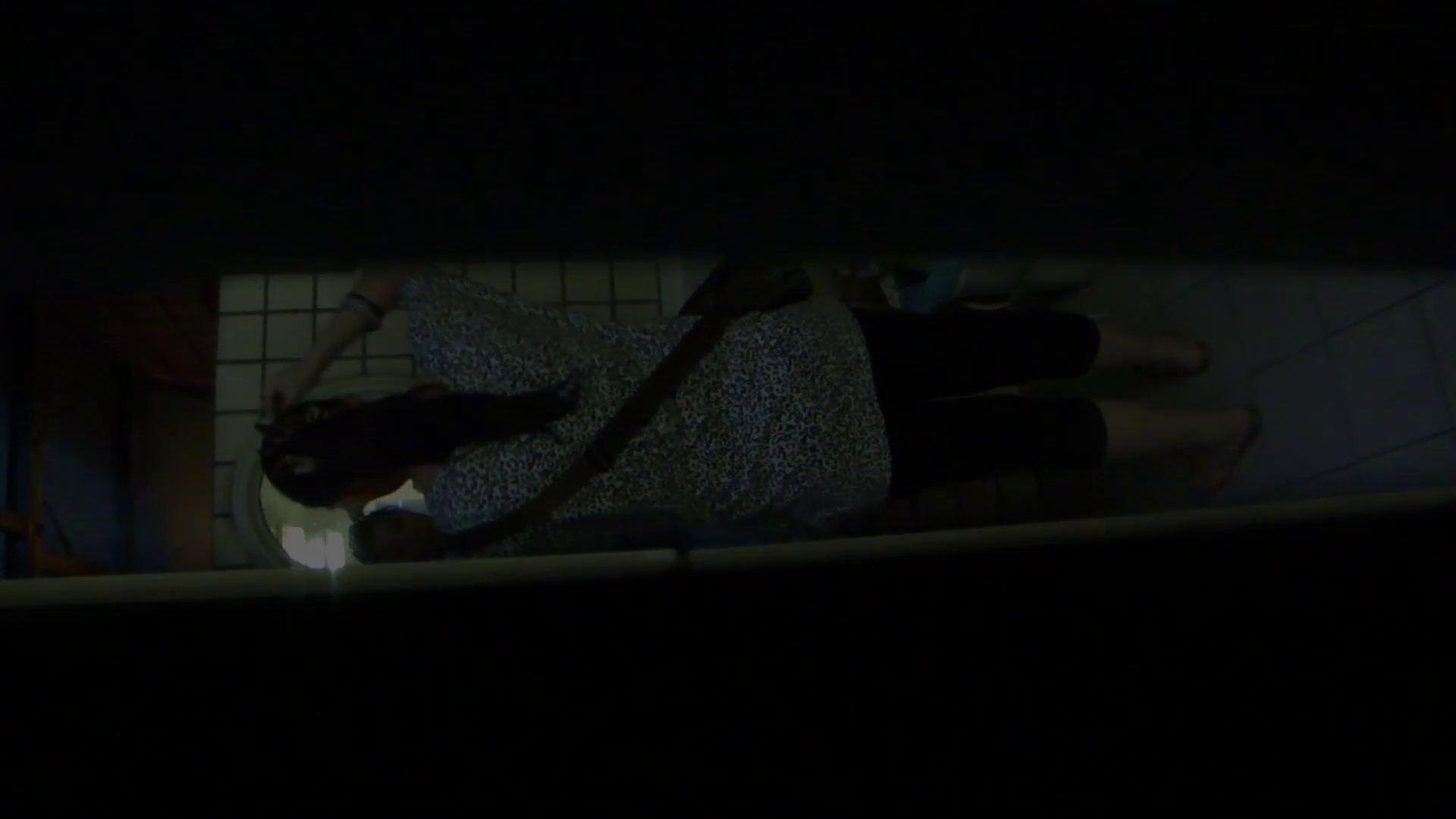 ギャルのツルピカ潜入盗撮!Vol.12  69枚