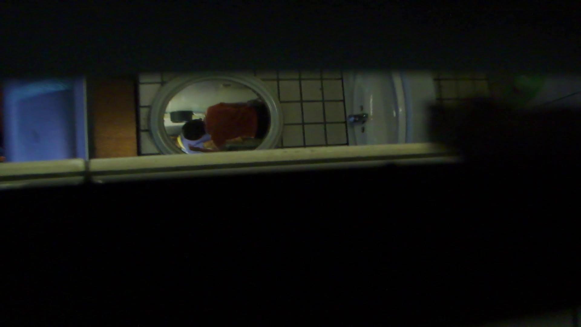 ギャルのツルピカ潜入盗撮!Vol.12 うんこ 性交動画流出 69枚