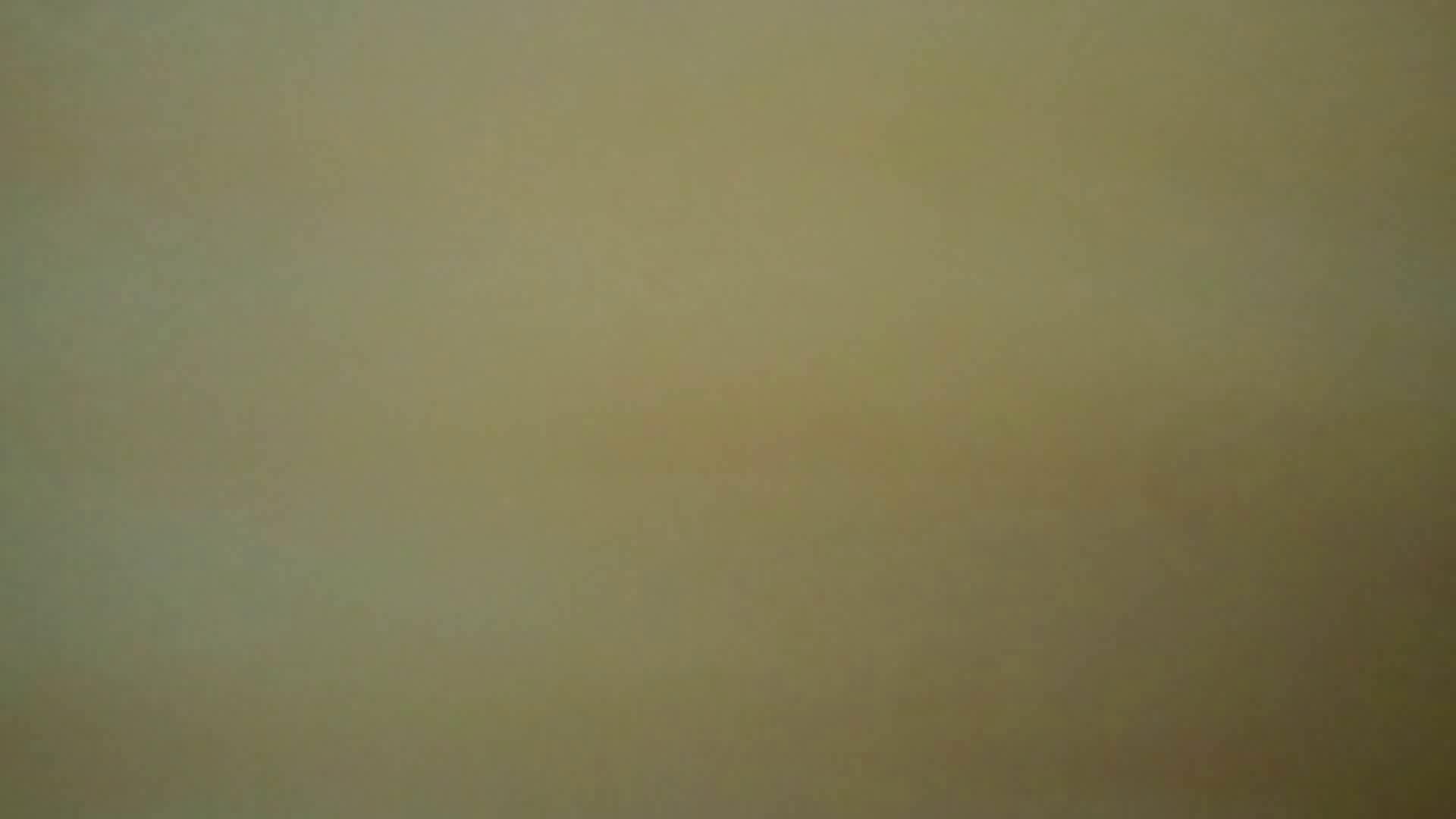 化粧室絵巻 商い場編 VOL.14 0 | エロいOL  113枚