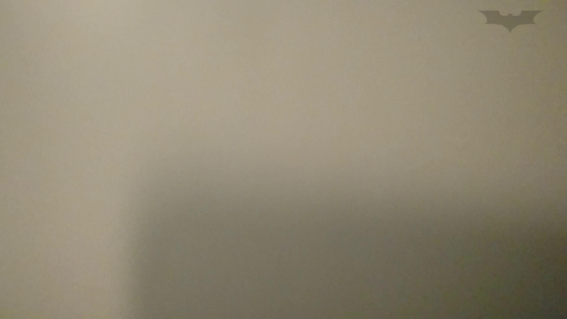 化粧室絵巻 ショッピングモール編 VOL.13  65枚