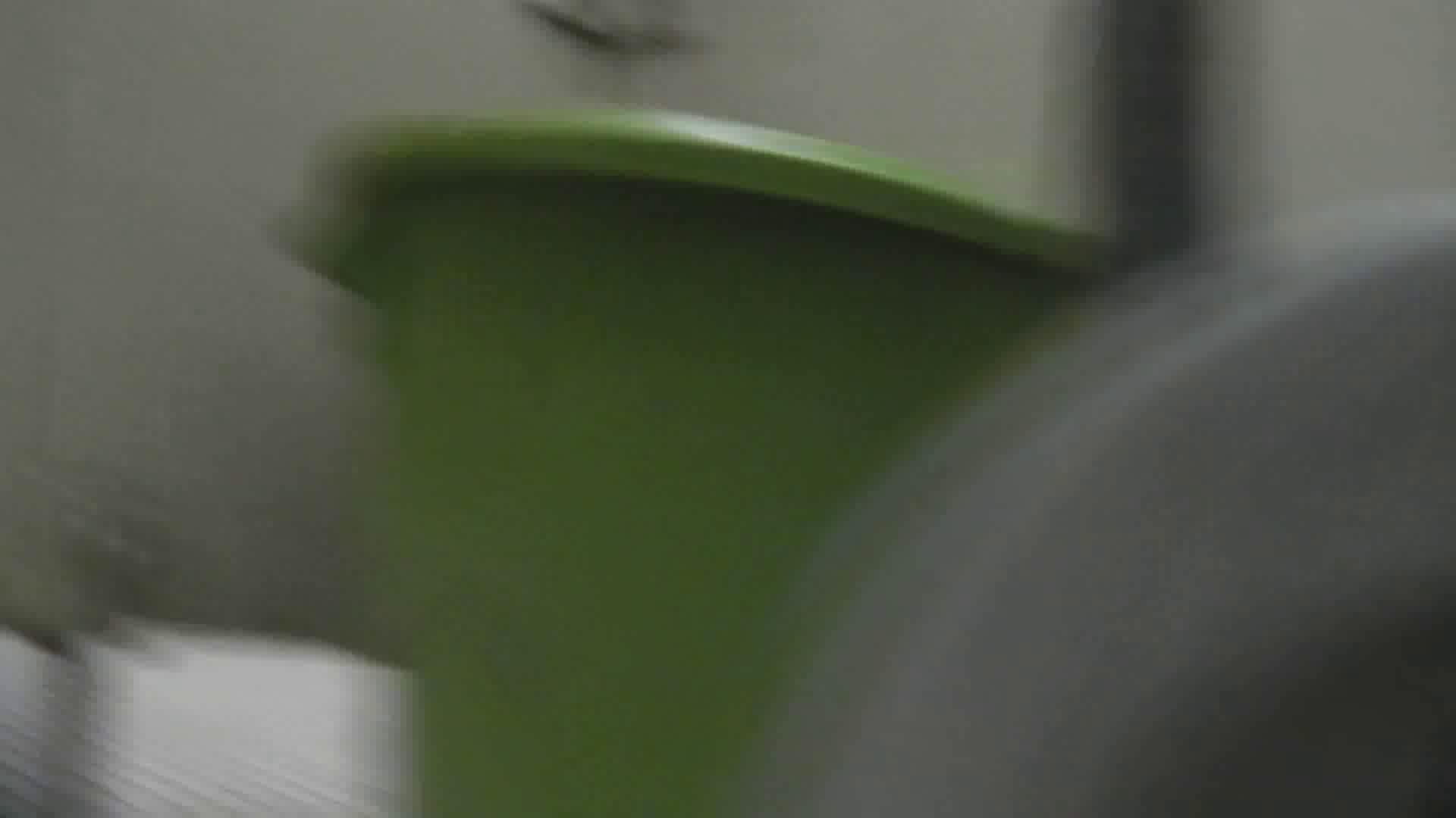 洗面所特攻隊 vol.004 可愛らしい女性です。 エロいOL スケベ動画紹介 74枚