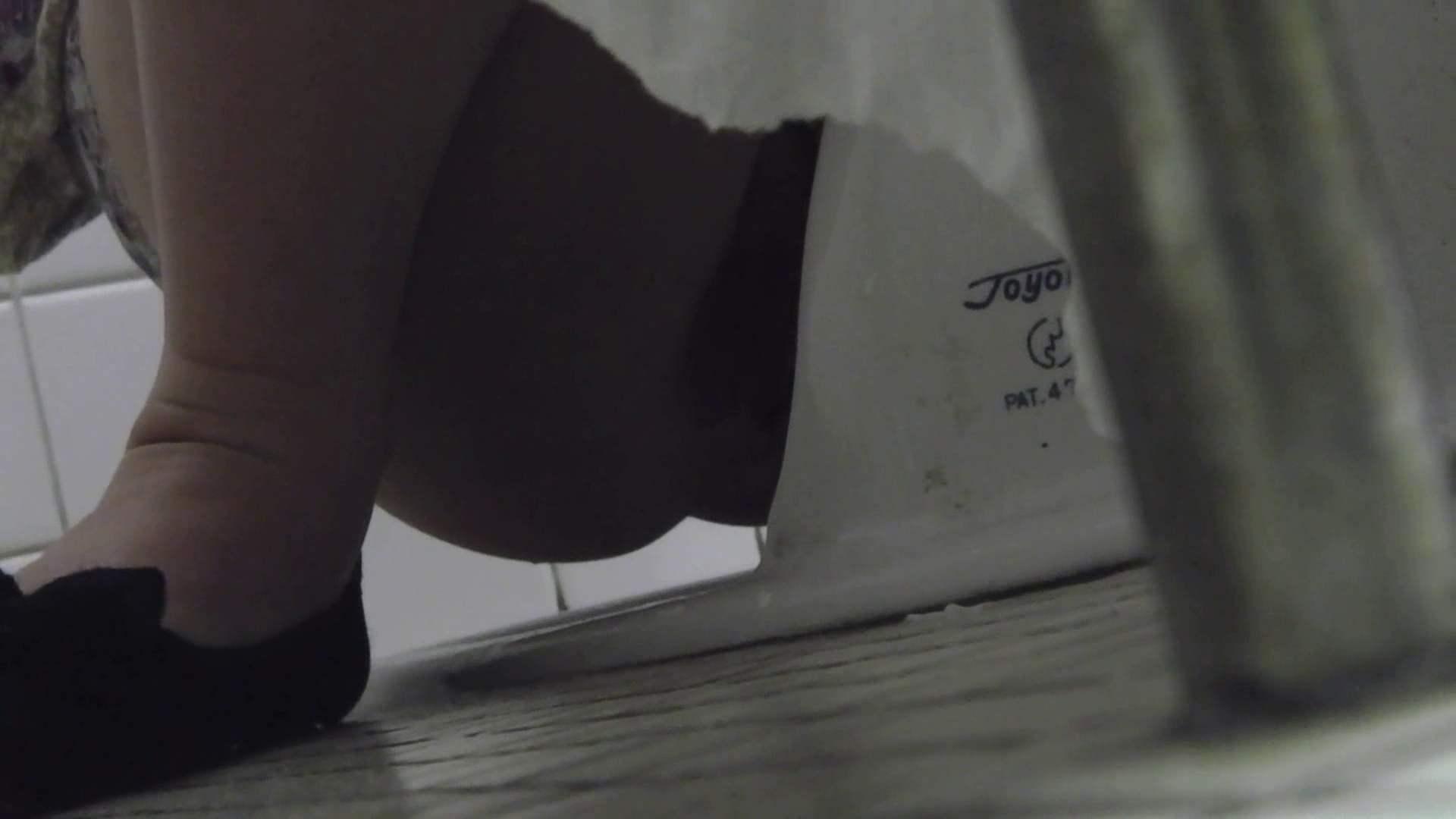 洗面所特攻隊 vol.004 可愛らしい女性です。 バックショット 盗み撮り動画 74枚
