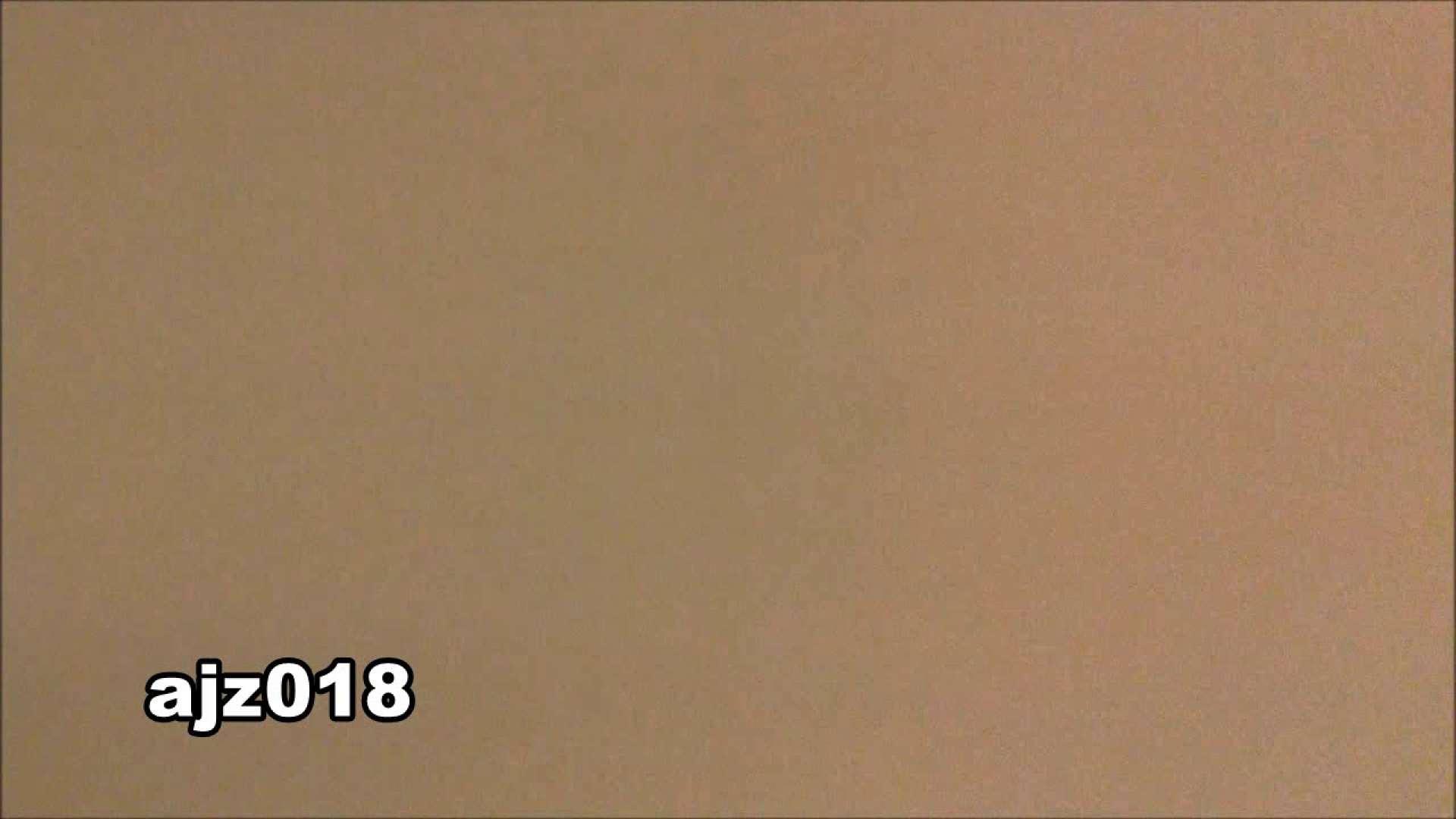 某有名大学女性洗面所 vol.18 和式 われめAV動画紹介 73枚