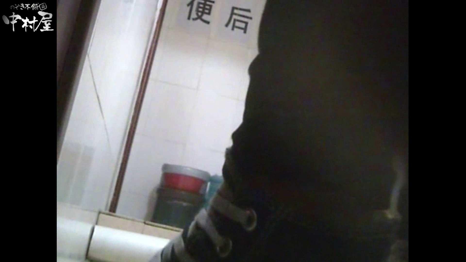 李さんの盗撮日記 Vol.14 和式 性交動画流出 105枚