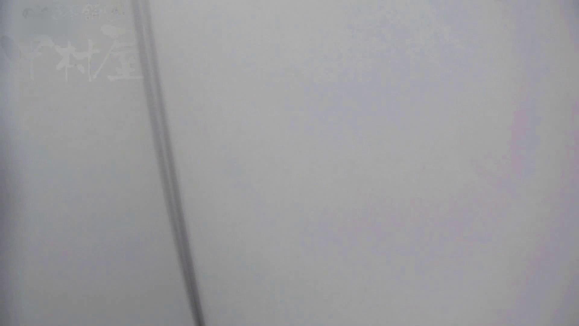 美しい日本の未来 No.17 番外編 ※※※閲覧注意※※※ 女子トイレ すけべAV動画紹介 76枚