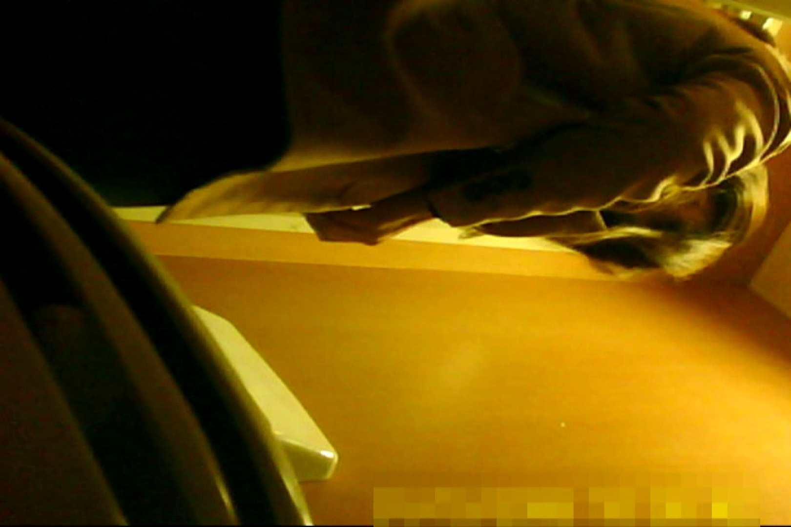 魅惑の化粧室~禁断のプライベート空間~20 ガールの盗撮 性交動画流出 110枚